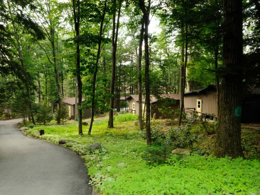 camp cabins set into the woods with path leading down the hill